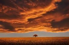 Haiku Sunset Image Creative Talents Unleashed
